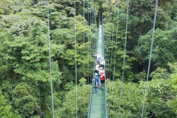 Guided Walk on Hanging Bridges